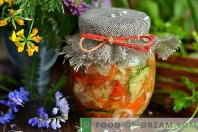 Kopūstų salotos žiemai su agurkais ir pomidorais