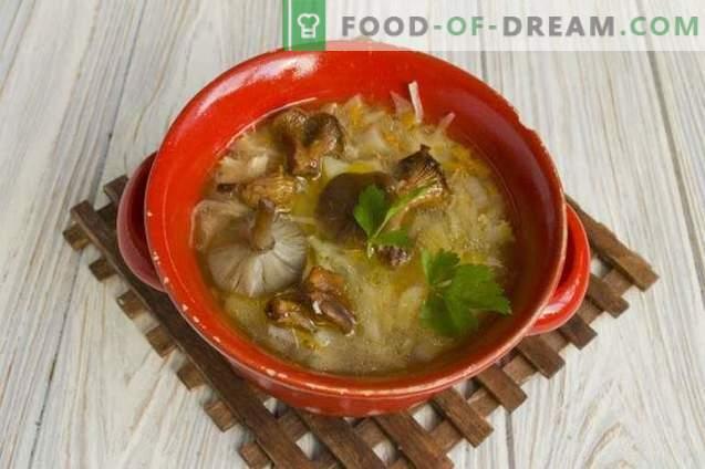 Grybų kopūstų sriuba su kopūstais