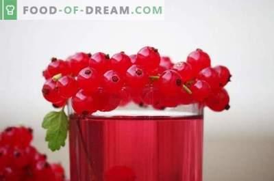 Raudonųjų ir baltųjų serbentų receptai