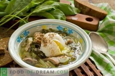Srutų sriuba su mėsa ir kiaušiniu