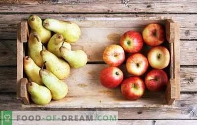 Kompott von Äpfeln und Birnen für den Winter: Die Komponenten des Geschmacks. Lieblings-Kompott aus Äpfeln und Birnen für den Winter in Rezepten ohne Feinheiten