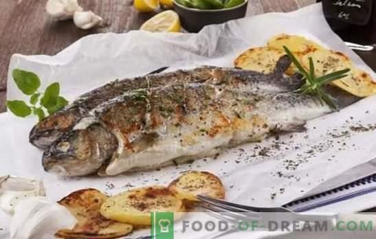 Sugavimo žuvis, viskas yra skanus ant grotelių! Kepta jūros ir upės žuvų receptai: kulinarinė pagalba žvejams ir skanių žuvų mėgėjams
