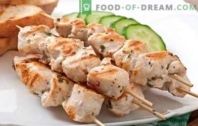 Kiaulienos kepsnys - vasaros aromatai. Kebabo receptai kiaulienos kepenyse, įdėkloje, folijoje, indelyje