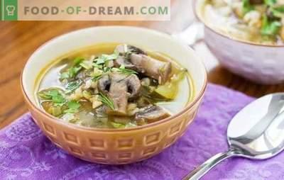 Grybų sriuba su perlų miežiais yra gausus ir lengvai ruošiamas patiekalas. Originalūs grybų sriubos receptai su perlų miežiais