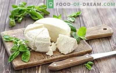 Rauginto pieno sūris yra natūralus pieno produktas. Sūrio gamybos iš jogurto variantai namuose