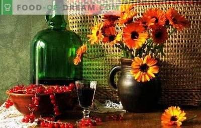 Vasaros skonis ir spalva serbentų tinktūrose. Rusijos degtinė - geriausi serbentų likerio alkoholio receptai