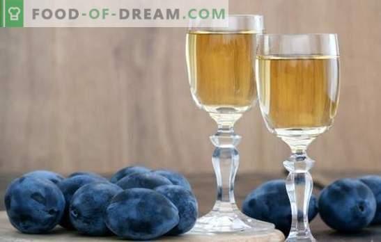 Slyvų vynas namuose: nežinau, kaip - mes mokysime! Šio vyno paruošimo iš slyvų namuose ypatybės