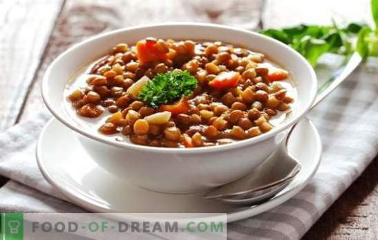 Lentil in a slow cooker - recipes for health! Variants of the first and second courses, the best recipes from lentils for the multicooker