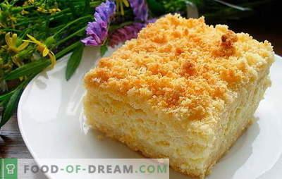La tarte au caillé et aux pommes est une gâterie saine. Recettes pour le fromage cottage et la tarte aux pommes: remplissez les rations de vitamines