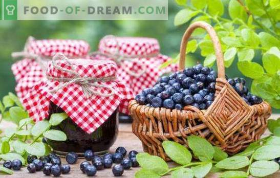 Mėlynių paruošimas žiemai: uogienė, marmeladas, marmeladas, kompotas. Receptai ruošiami iš mėlynės su cukrumi ir savo sultimis