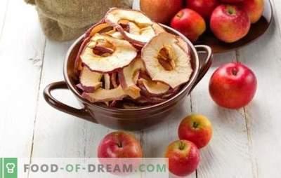 Kaip džiovinti obuolius namuose - paprastas sprendimas vasaros derliaus nuėmimui. Ką gaminti iš džiovintų obuolių namuose?