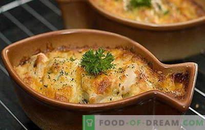 Lydeka grietine yra skanus plėšrūnas! Įdomios lydekos receptai grietinėje ir orkaitėje: įdaryti bulvėmis