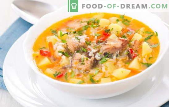 Žuvų sriuba su ryžiais yra lengvas, kvapnus pirmasis pietūs. Geriausi receptai žuvų sriubai ruošti su ryžiais