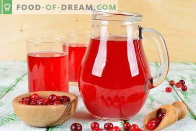 Cranberry mors - as melhores receitas. Como corretamente e saboroso cozinheiro cranberry mors.