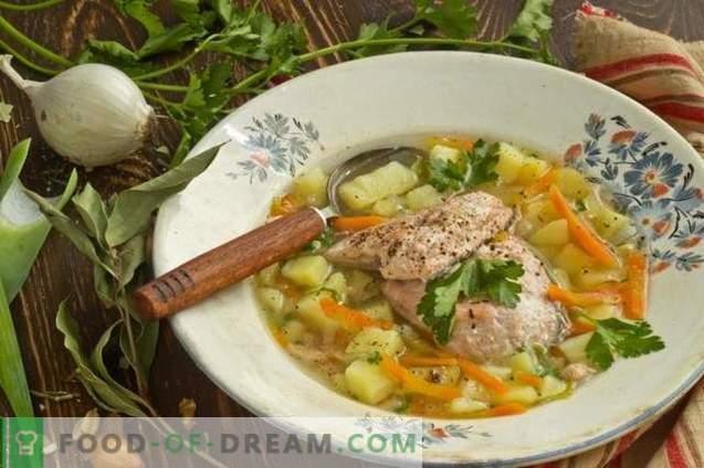 Lašišinių žuvų sriuba