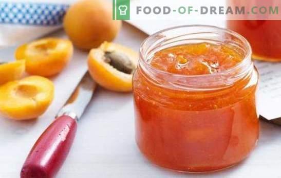 Abrikosų sultys yra saldus desertas su saulės skoniu. Pasirenkami abrikosų receptai arbatai, žiemai, kepimui