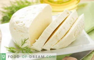 Geriausi naminių karvių pieno sūrio receptai. Karvės pieno sūris: pagrindinės naminių sūrių gamybos taisyklės