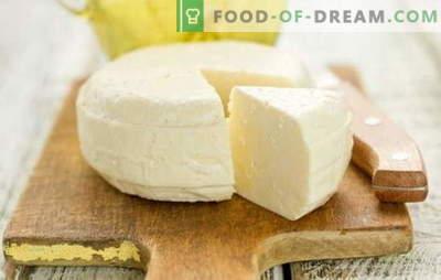 Naminis sūris iš pieno ir kefyro yra skanus, švelnus ir, svarbiausia, natūralus produktas. Įrodytas ir originalus naminio sūrio, pagaminto iš pieno ir kefyro, receptai