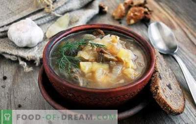 Gavėnų sriuba - pasninkui ir mitybai yra gera! Geriausi tradiciniai ir originalūs liesos mėsos sriubos receptai be mėsos ir gyvūnų riebalų