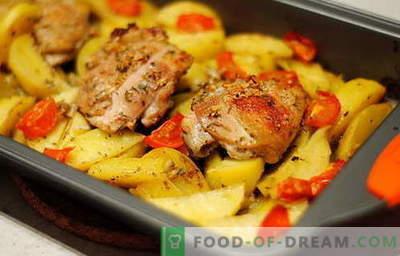 Пилешко печен со компири - најдобрите рецепти. Како правилно и вкусно готви печени пилешки со компири.