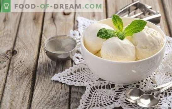 ¡El helado hecho de leche en casa es un producto natural! Recetas de deliciosos helados de leche en casa