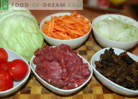 Kopūstai su mėsa - geriausi receptai. Kaip tinkamai ir skaniai virti kopūstus su mėsa.