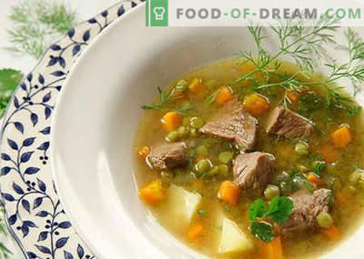 Sriubos su mėsa - geriausi receptai. Kaip tinkamai ir skaniai virti sriubas su mėsa.