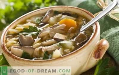 Grybų pievagrybių sriuba - lengva ir paprasta! Grybų grybų sriuba su vištiena, grikiais, makaronais ir sūriu receptai