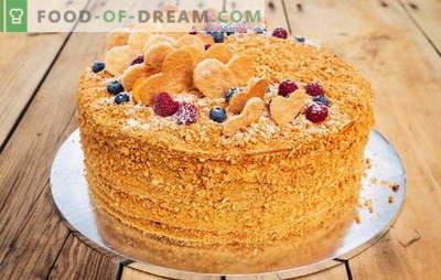 Paprastas kefyro pyragas: kepimo receptai kiekvienam skoniui. Namų technologija paprastų pyragų paruošimui kefyrui