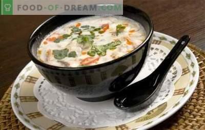 Kokosų pieno sriuba yra skonio žaidimas! Įvairių sriubų su kokoso pienu receptai egzotiškam meniu