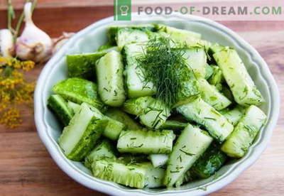 Agurkų salotos - geriausi receptai. Kaip tinkamai ir skaniai virti agurkų salotas.