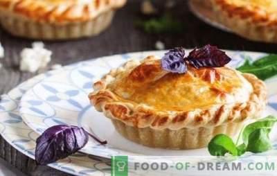 Adyghe sūrio pyragas - aromatiniai pyragaičiai. Receptai atviriems ir uždariems Adygei sūrio pyragams