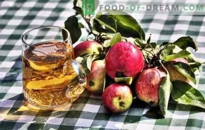 Naminių obuolių sidro gamyba - natūralus produktas! Kaip paruošti naminių obuolių sidro žaliavas