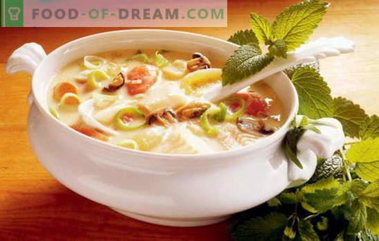 Skanios daržovių sriubos receptas - tinkamos mitybos pagrindas. Geriausių gardžių daržovių sriubos receptų pasirinkimas iš įvairių daržovių