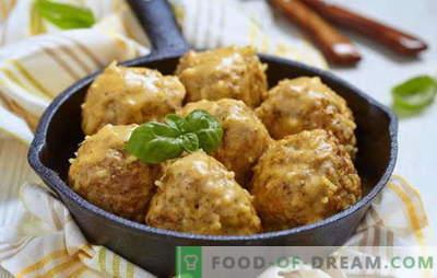 Ciuperci din sos de smantana - cele mai bune retete. Cum să gătești chifteluțe în sos de smantana de carne de pui, carne de vită, carne de pește