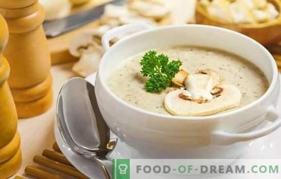 Kvapiosios šampano skonio sriubos: laipsniški receptai. Paruoškite paprastas įdaras ir Europos kreminės grybų sriubas (žingsnis po žingsnio)