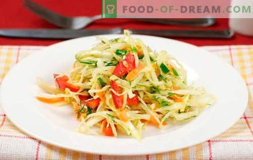 Kopūstų salotos su paprikomis - geriausi receptai. Virti salotos su kopūstais ir paprika.