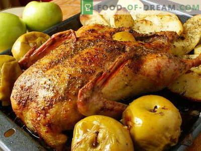 Pīle ar āboliem - labākās receptes. Kā pareizi un garšīgi pagatavot pīles ar āboliem.
