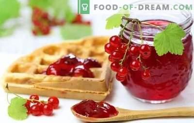 Raudonųjų serbentų želė yra šviesus ir sveikas desertas. Geriausi raudonųjų serbentų želė receptai su varškės, grietinėlės, pieno, vyno