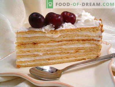 Grietinės pyragas - geriausi receptai. Kaip tinkamai ir skaniai ruošti grietinę.