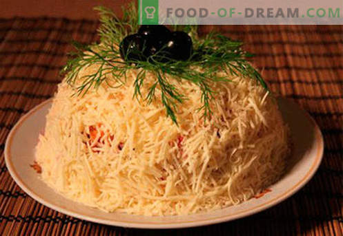 Sirna solata - najboljši kulinarični recepti. Kako pravilno in okusno kuhati sir solato.