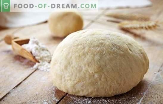 Gera tešla kurnikui yra raktas į skanius pyragus. Įvairūs mielių, lapų tešlos, kefyro, grietinės, margarino receptai