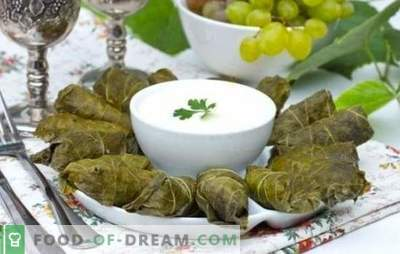 Dolma in grape leaves is the crown of Caucasian culinary art. Classic and original recipes dolma in grape leaves