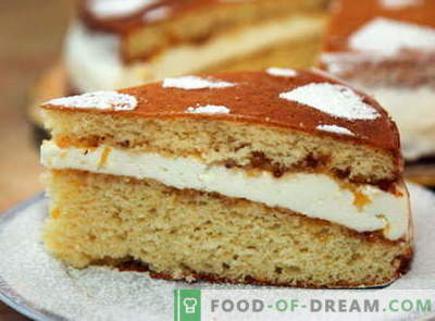 Sponge cake - the best recipes. How to properly and tasty cook sponge cake.