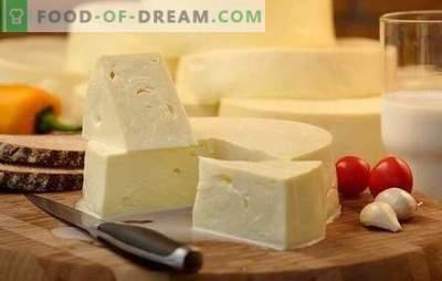 Kaip greitai virti suluguni namuose: jaunas baltasis sūris. Švelnus suluguni sūrio gaminimas namuose