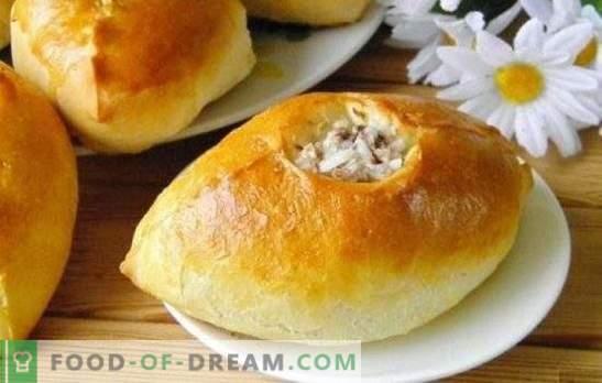 Padažai su malta mėsa ir ryžiais - maitinantys, skanūs, namų stiliai! Kepami, kepti ir kepti pyragaičiai su malta mėsa ir ryžiais
