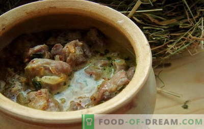Chicken stomachs in sour cream - for lovers of giblets! Recipes for chicken stomachs with sour cream in the oven, in the slow cooker, in the pots