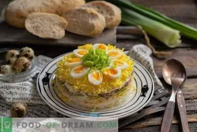 Sluoksniuotos salotos su tunu a la Mimosa