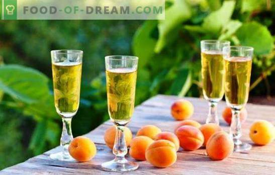 Namų vyndariai atskleidžia paprastų abrikosų vynų paslaptis. Įvairių naminių abrikosų vynų receptai
