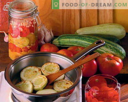 Konservuotos salotos - geriausi receptai. Kaip tinkamai ir skaniai virti konservuotos salotos.